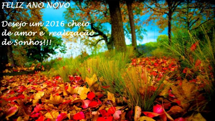 fall-leaves-images-hd-wallpaper-1080p1.jpg